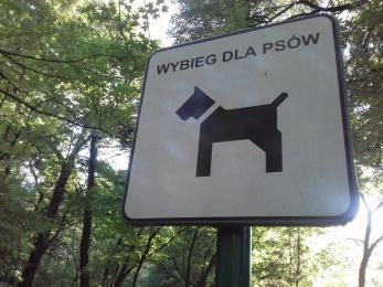 W mieście powstanie nowy wybieg dla psów?