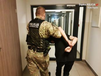 Areszt za napaść na policjantów