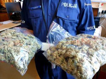 Policyjny pościg za narkotykowym dilerem! Pasażer uciekał pieszo z... reklamówką marihuany
