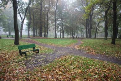 Dwa nowobytomskie parki: Dworski i przy ul. Hallera zostaną odnowione